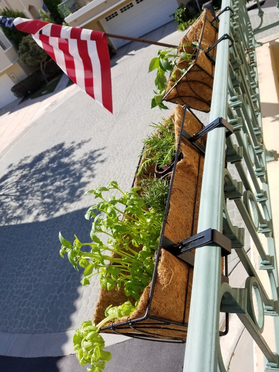 Full Planter Boxes Hanging Fence